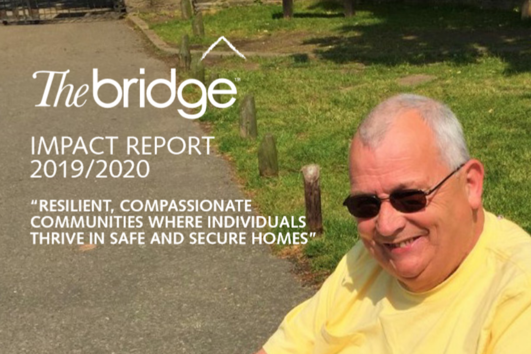 The Bridge Launches Its 25th Anniversary Annual Report